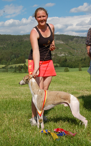 solle whippet